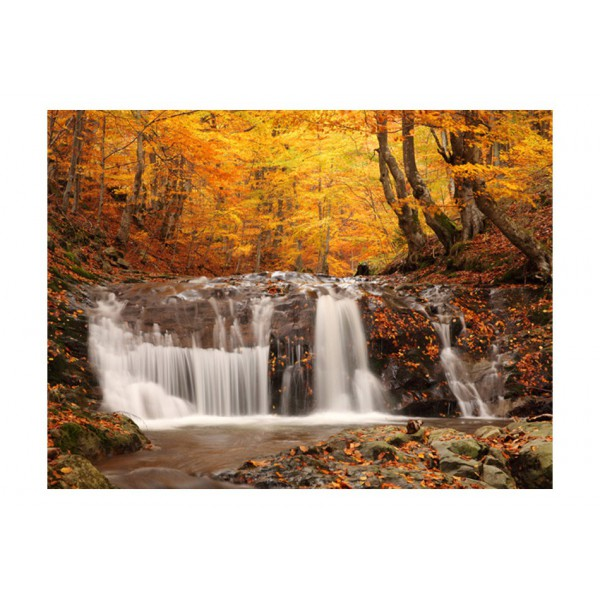 Fototapeta - Autumn landscape : waterfall in forest